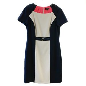 Tahari colorblock cap sleeve jersey career dress